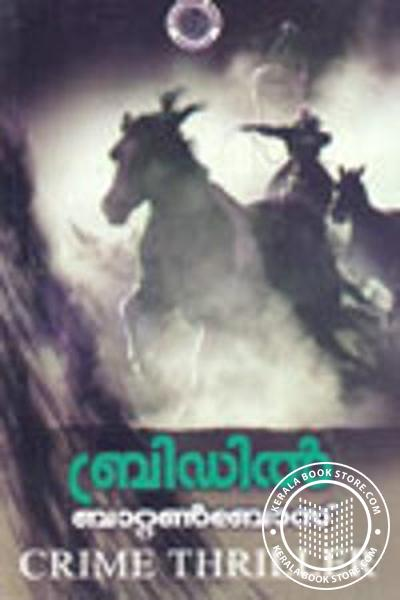 Cover Image of Book Bridle