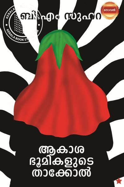 Cover Image of Book ആകാശ ഭൂമികളുടെ താക്കോല്