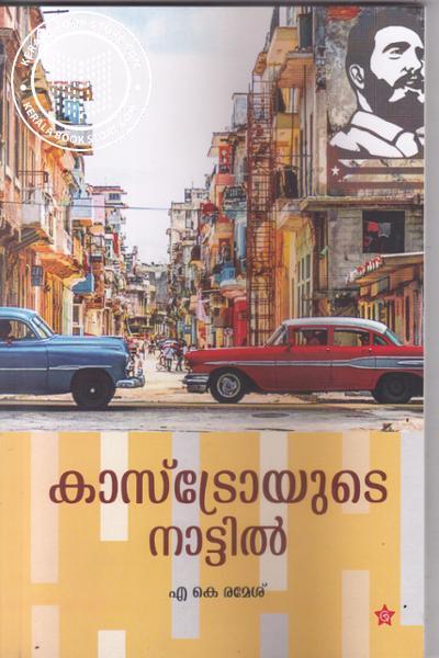 Cover Image of Book Castroyude Nattil