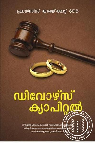 Cover Image of Book Divorce Capital