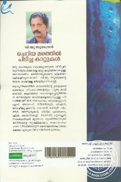 back image of ചെറിയ മരത്തില് പിടിച്ച കാറ്റുകള്