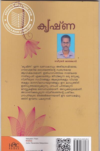 back image of krishna