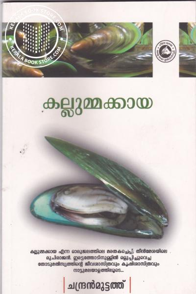 Image of Book Kallummakkaya