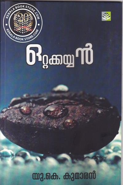 Cover Image of Book Ottakkayyan