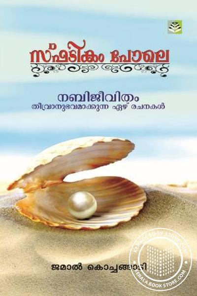 Cover Image of Book Spatikam Pole