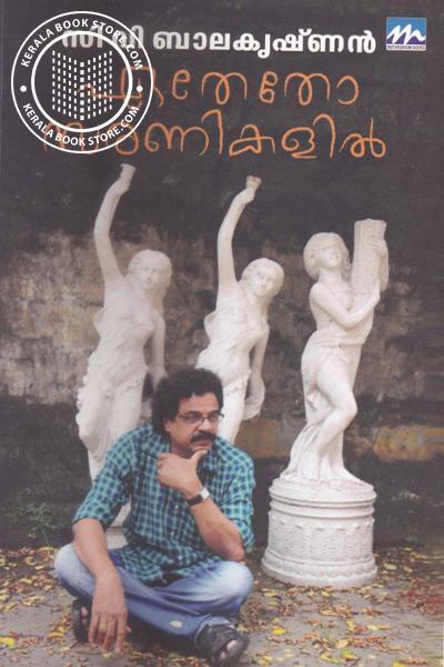 Cover Image of Book ഏതേതോ സരണികളില്