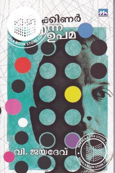 Cover Image of Book മരണക്കിണര് എന്ന ഉപമ