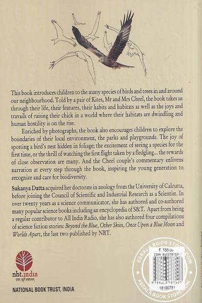 back image of A Kites Story