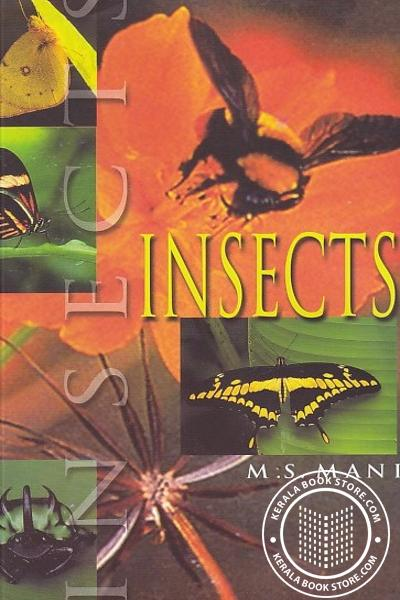 Cover Image of Book Insects