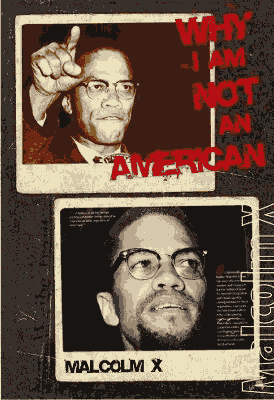 Thumbnail image of Book WHY I AM NOT AN AMERICAN