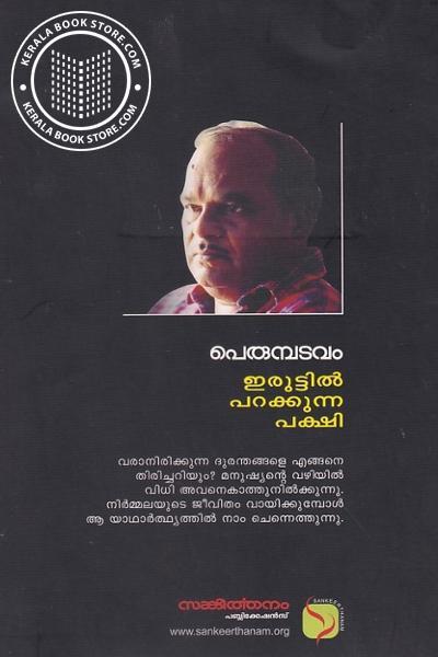 back image of ഇരുട്ടില് പറക്കുന്ന പക്ഷി