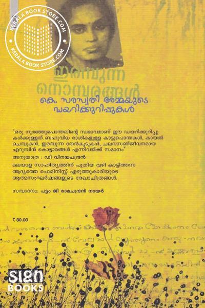 back image of ഇരമ്പുന്ന നൊമ്പരങ്ങള്