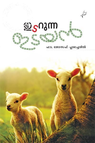 Image of Book Idarunna Idayan