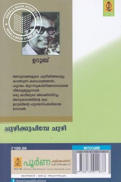 back image of ചുഴിക്കു പിമ്പേ ചുഴി